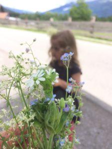 Mini-Blumensträußchen mit Vergissmeinnicht
